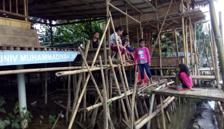 Kelompok Stacia Hijau yang Mengubah Desa Kami (Bagian 1)